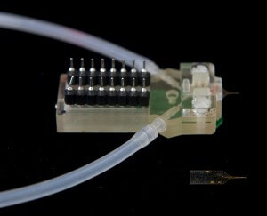 Innovative microfluidic systems to detect brain damages