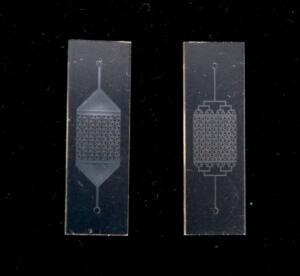 What is Microfluidics: a microscale piece of fine art