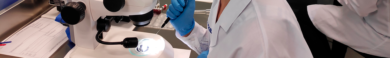 Biotech job vacancies